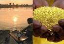 भारतातील अशीही एक नदी जी फ्री मध्ये देते सोनं! ही कोणतीही अफवा नाही हे १००% खरं आहे!