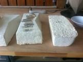 Mycelia blocks on test