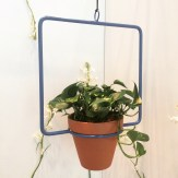 Hanging planter by Twin dogs