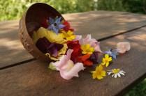 Edible flowers: bean, pea, chamomile, borage, geranium, nasturtium