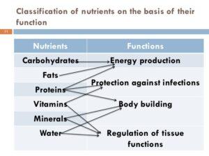 food functions