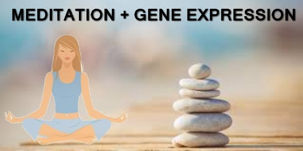 meditation_to_alter_gene_expression