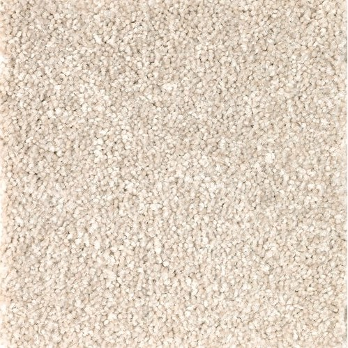 Homespun True Harmony Mohawk Residential Carpet Flooring