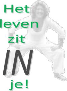logo hlzij groen grijs nov 2015