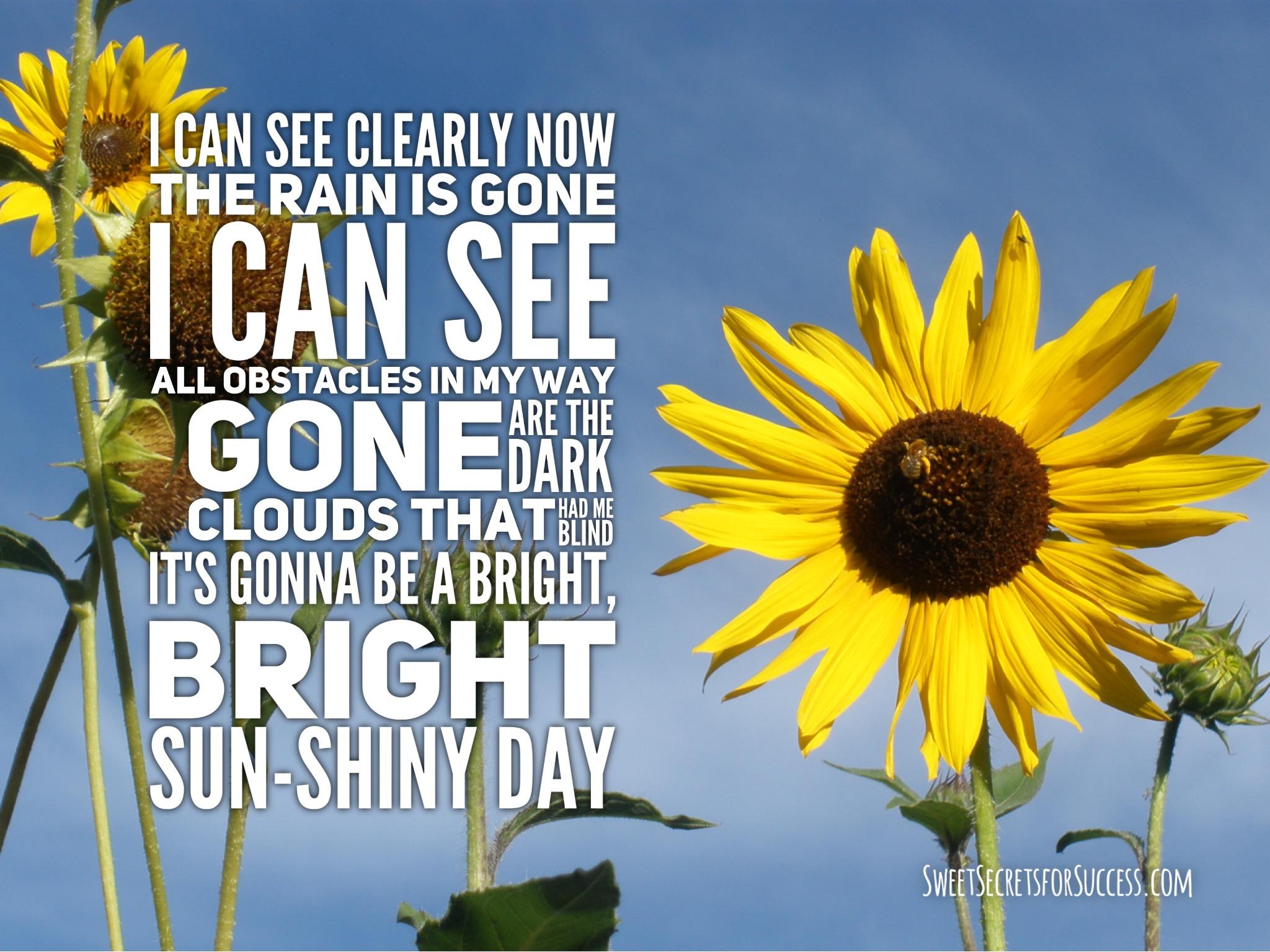 A bright shiny day