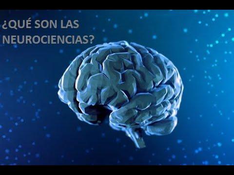 ¿Qué es la Neurociencia?