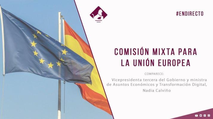 Comisión Mixta para la Unión Europea (25/02/2021)