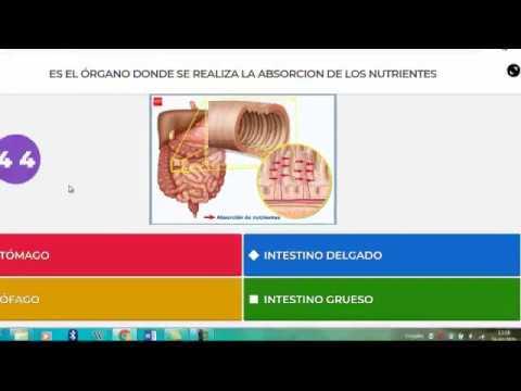 PROYECTO DE INNOVACIÓN DIGITAL - BIOLOGÍA