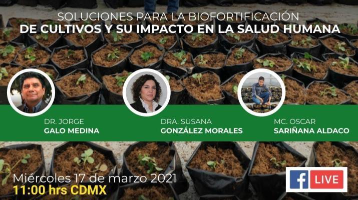 Soluciones para la biofortificación de cultivos y su impacto en la salud humana ✅
