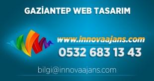 Nizip Web Tasarım
