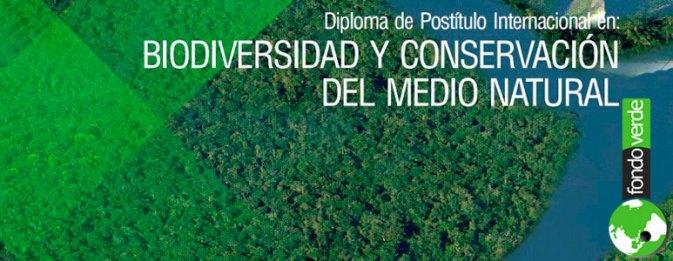 Diploma Internacional en Biodiversidad y Conservación del Medio Natural
