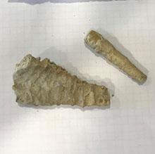 Carbonation sample InnovaConcrete sampling in Kaunas