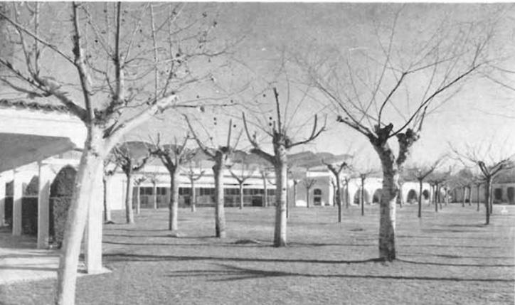 Zarzuela-racehorse-View-of-the-arcades