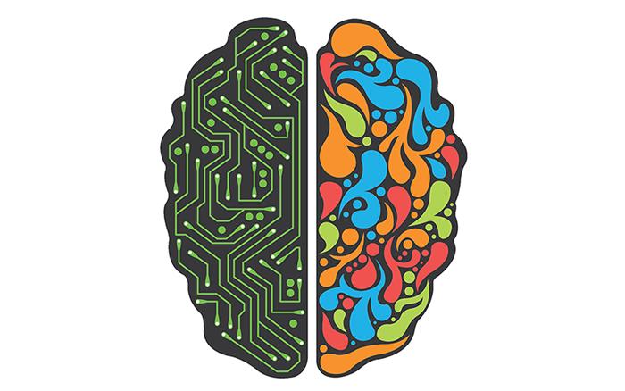 actividades extraescolares, dos hemisferios del cerebro