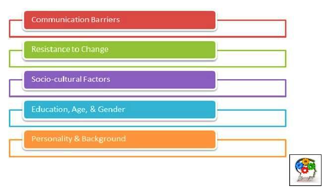 Workplace Diversity Innovation