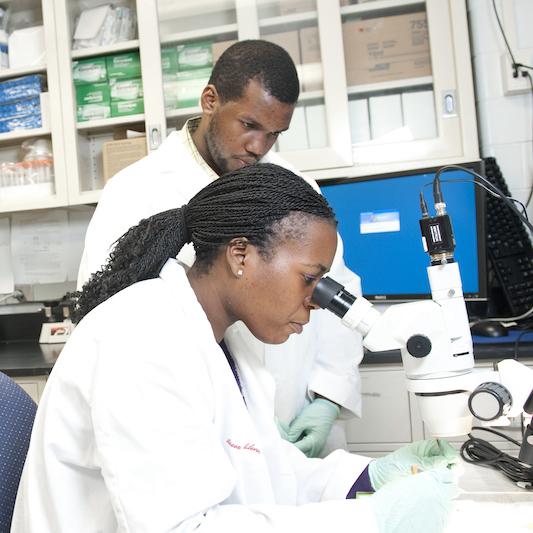 Winston-Salem State University students working in the Innovation Quarter lab