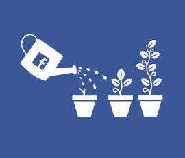 How to Grow Business Using Facebook