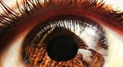 New technique to deliver stem cell therapy may help damaged eyes regain their sight