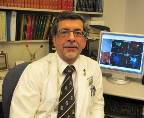 UAlberta medical researchers make key discovery in fight against Alzheimer's disease