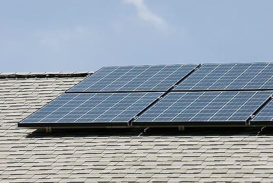 Winkle_solar_panels07_8199