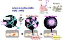 Smart Anticancer 'Nanofiber Mesh'