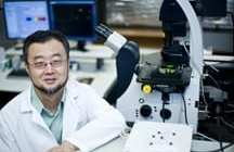Researcher finds way to convert blood cells into autoimmune disease treatment