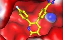 Rutgers Scientists Discover Molecules that Show Promise for New Anti-Flu Medicines