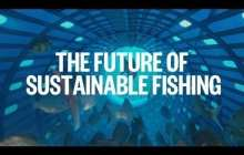 Breakthrough fishing technology could radically change sustainable fishing