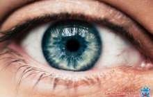 A holistic approach catches eye disease early