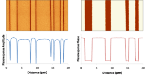 180_degree_ferroelectric_domains_with_profiles