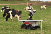 CowBot: Robot used to round up cows is a hit with farmers