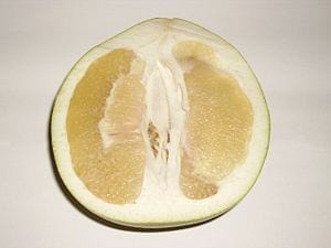 Citrus fruit inspires a new energy-absorbing metal structure