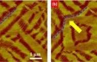 Shape Memory Breakthrough: Berkeley Lab Researchers Discover Nanoscale Shape-Memory Oxide