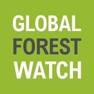 Global Forest Watch: Dynamic New Platform to Protect Forests Worldwide