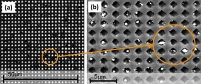 LEFT: The system being developed by UH Cullen College of Engineering researchers diagnoses disease by blocking holes with pathogens and some other connected material, in this case silver particles, preventing light from shining through. RIGHT: This is a close-up of nanoholes blocked by these particles. Credit: Jiming Bao Research Group