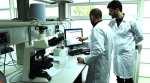 Packaged batches of stem cells for regenerative medicine
