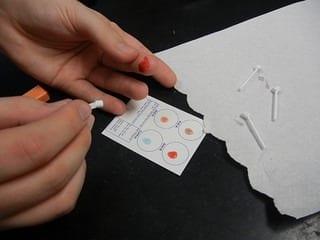 blood testing (Photo credit: biologycorner)