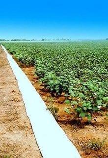 Irrigation Tube (Photo credit: Big Grey Mare)