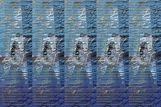 3474772980_b1058e3fe3_n