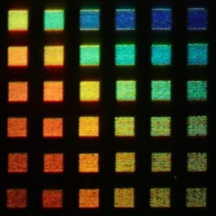 Rice University's new color display technology is capable of producing dozens of colors, including rich red, green and blue tones comparable to those found in high-definition LCD displays. Credit: J. Olson/Rice University