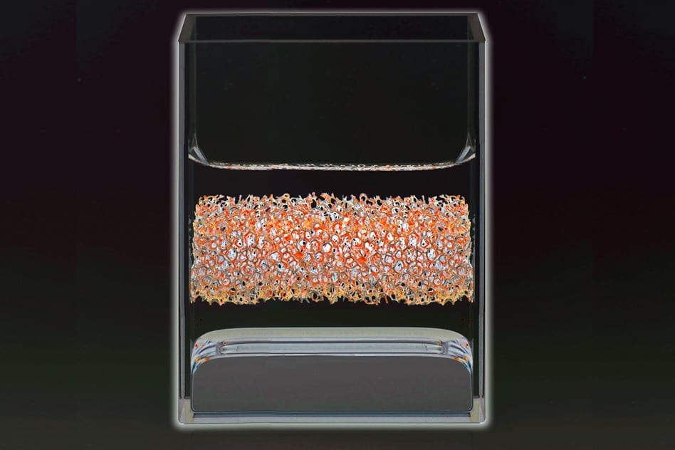 A physical model of the liquid metal battery at room temperature, in a glass container. The bottom layer is the positive electrode. In the real battery this is an alloy of antimony and lead, represented here by mercury. The middle layer is the electrolyte — in reality, a mixed molten salt; here, a solution of salt in water. The top layer is the current collector of the negative electrode, a metal mesh of iron-nickel alloy.