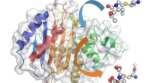 Scientific breakthrough will help design the antibiotics of the future