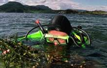 Turning humble seaweed to biofuel