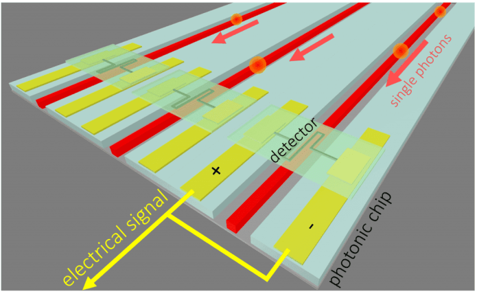 Illustration of superconducting detectors on arrayed waveguides on a photonic integrated circuit for detection of single photons. Credit: F. Najafi/ MIT