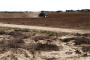 Plowing prairies for grains: Biofuel crops replace grasslands nationwide
