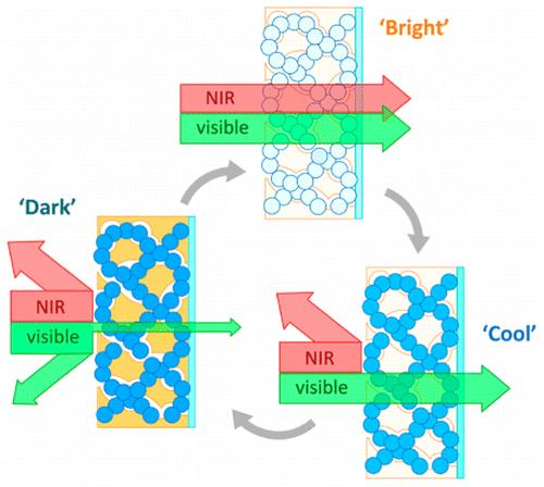 Smarter window materials can control light and energy
