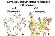 Understanding of complex networks could help unify gravity and quantum mechanics