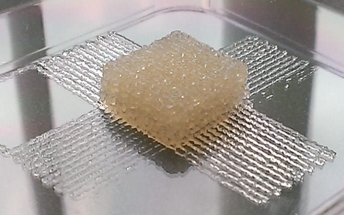 Silk bio-ink could help advance tissue engineering with 3-D printers