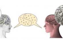 An artificial neural network learns to use human language