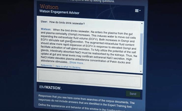 Screen shot of Georgia Tech's Watson system.